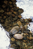 Pebbles and Rocks in a Stream with Reflections