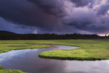 A Storm Brewing over the Gibbon River  Meadows  and Evergreen Forests