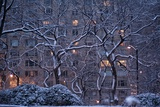 Manhattan Buildings and Trees Along Central Park During a Blizzard at Night