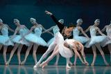 Maria Alexandrova  of the Bolshoi Ballet  as Odette in 'Swan Lake'