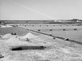 Salt Works and Refining Vats  Mexico  C1880-97