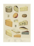 A Few Favourite Cheeses