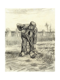 Potato Gatherer  1885