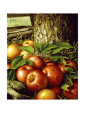 Apples and Tree Trunk  1891