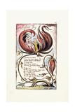 Infant Joy  1789