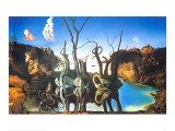 Cygnes reflétant des éléphants Reproduction d'art par Salvador Dalí