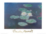 Water Lilies by Nightfall