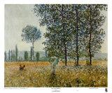 Fields in Spring