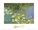 Water Lilies of the Orangerie as Giverny