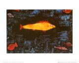The Golden Fish  c1925