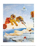 Dream Caused by the Flight of a Bee around a Pomegranate  c 1944
