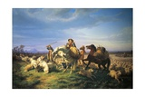 Flock  1861