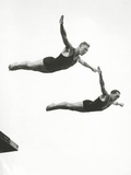 Platform Diving at the Berlin Olympic Games  1936