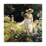 Among the Laurel Blossoms  1914