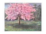 Pink Blossom  1994