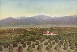 Redlands  California  View from Smiley Heights