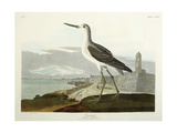Greenshank  View of the St  1835