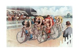 The Cycle Race  Pub the Calvert Litho Co  1895