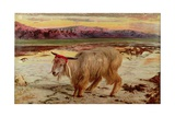The Scapegoat  1854