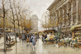 Paris Street in Autumn