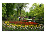 Botanical Garden in Madrid  Spain