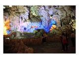 In Hang Dau Go Cave  Hang Dau Go Island in Ha Long Bay  North Vietnam  Quang Ninh  Vietnam