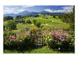 Flower Garden at Hoeglwoerth Monastery  Upper Bavaria  Bavaria  Germany