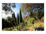 Villa Hanbury at Hanbury Botanic Gardens near Ventimiglia  Province of Imperia  Liguria  Italy