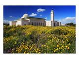 El Abidine Mosque in Carthage  Tunis  Tunisia