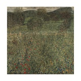 Orchard or Field of Flowers  Ca 1905