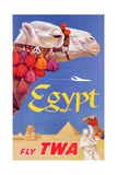 Poster Advertising Trans World Airlines Flights to Egypt  C1967