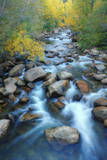 Carson River  Early Autumn Flow  Sierra Nevada