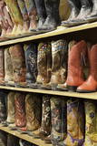 Cowboy Boots Lining the Shelves  Austin  Texas  United States of America  North America