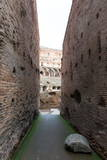 The Colosseum  UNESCO World Heritage Site  Rome  Lazio  Italy  Europe