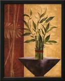 Lucky Bamboo I