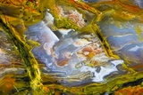 Rainbow Ridge Picture Agate