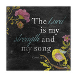 Strength and Love I