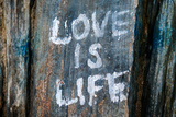 Love is Life Graffiti