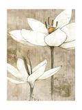 Pencil Floral I