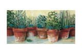 Herbes en potII Reproduction d'art par Carol Rowan