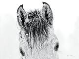 Snow Daze II Crop