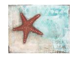 Étoiles de mer Reproduction d'art par Cassandra Cushman