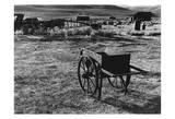 Bodi Wheelbarrow 2