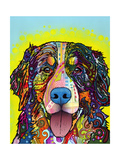 Bernese Mountain Dog Giclée par Dean Russo