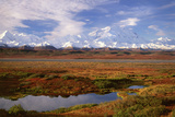 Tundra and Kettle Pond in Denali National Park  Alaska in the Fall Mount Mckinley in the Backgroun