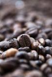 Coffee Beans - Bokeh
