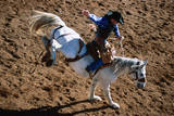 Overhead of Bronco Rider at Cloncurry Rodeo  Cloncurry  Queensland  Australia  Australasia