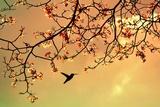 Bird Singing in the Morning Sky