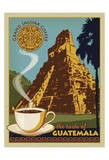 Jaguar Coffee Guatemala
