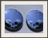 A Mirrored View of Palms in the South Beach Art-Deco District  Miami  Florida  USA
